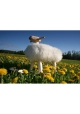 Mouton Tabouret Gustave